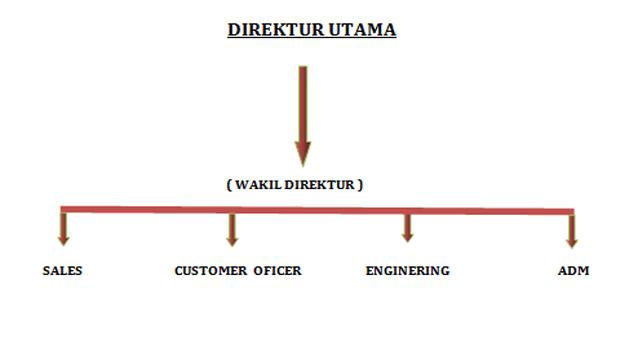 Management structure tunas sumatera